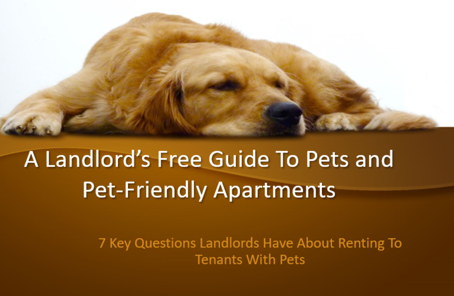 A landlord's guide to pets and pet-friendly apartments