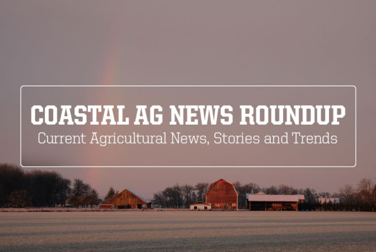 Ag News Roundup