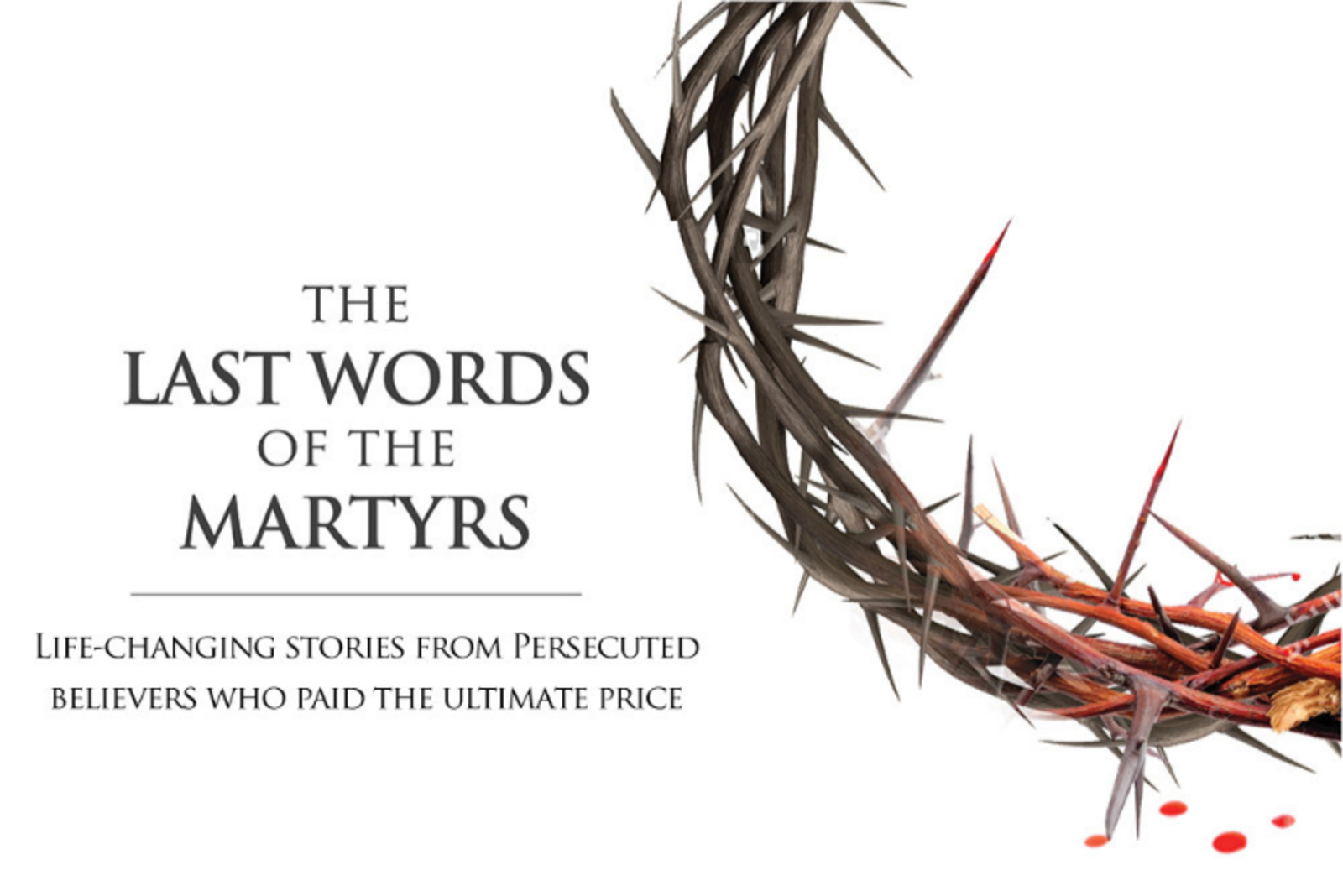 Last Words of the Martyrs book cover artwork