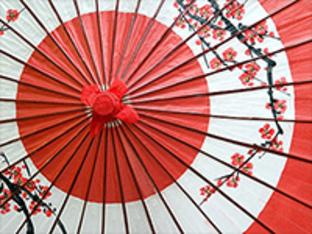 Meridian Diplomacy Forum on Japan