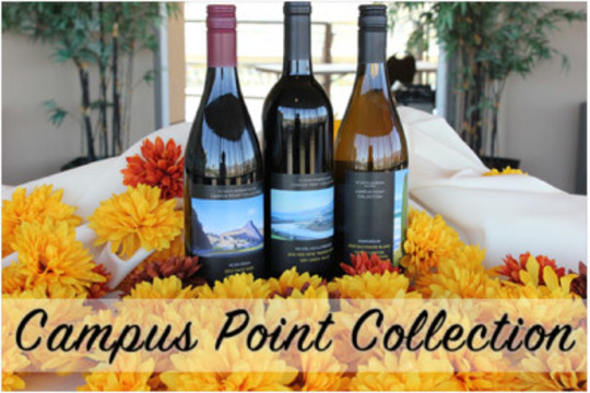 Campus Point Wine Collection