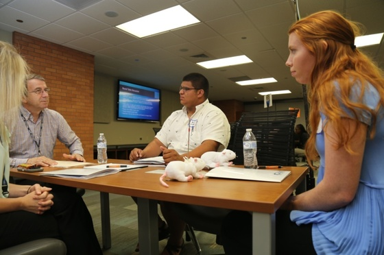 UAMS researcher Michael Owens, Ph.D., (left) meets with undergraduate students from across Arkansas at a workshop on opioids research.