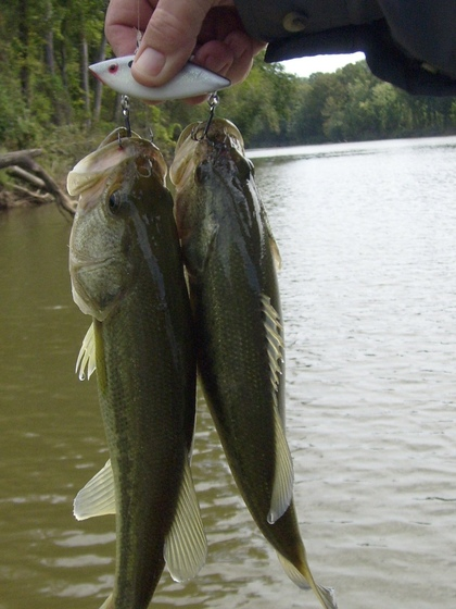Fishing is going good when you catch two on one catch. Photo supplied by Mike Siefert.