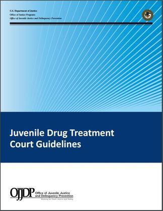 Publication of juvenile drug treatment court guidelines publication in various blue color blocks
