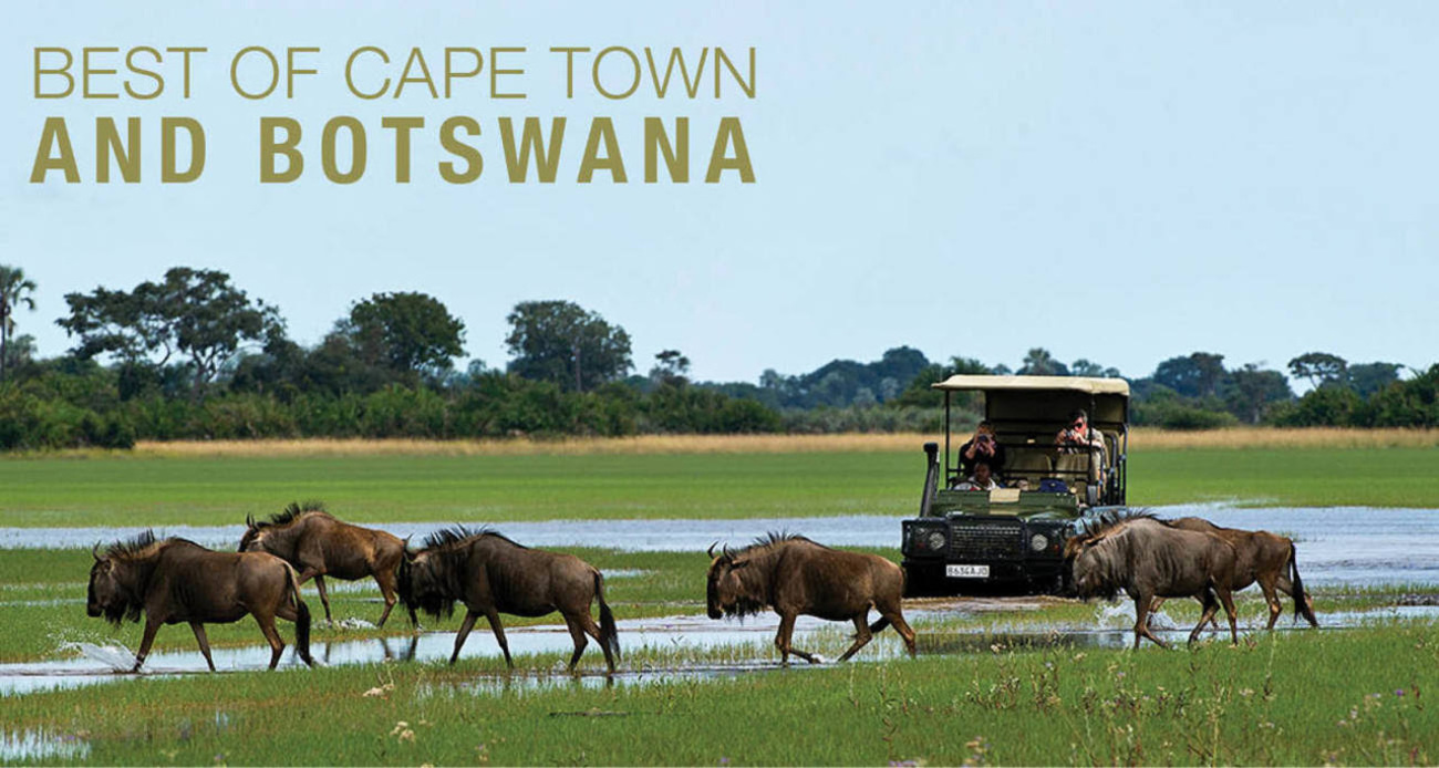 View the Best of Cape Town & Botswana itinerary