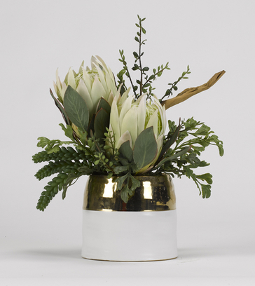 King proteas with in oval cream/gold ceramic