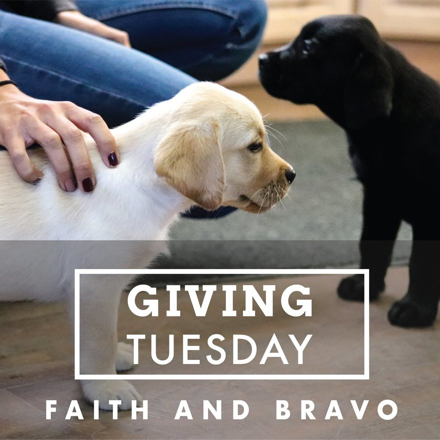 Donate Today for #GivingTuesday