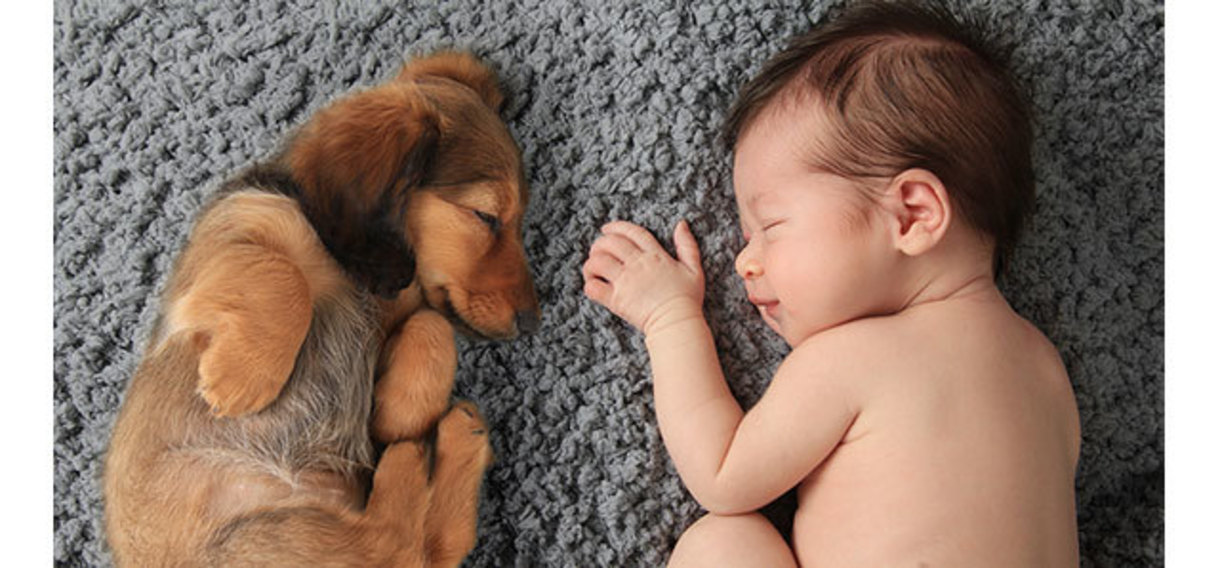 puppy and baby sleeping