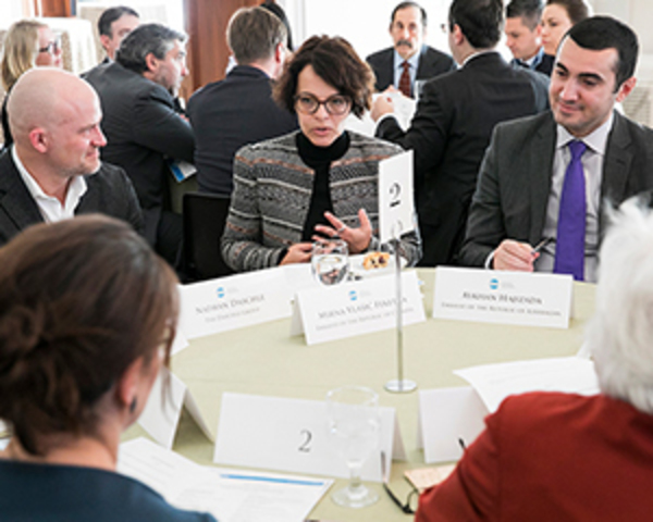 6 Advocacy Tips for the International Diplomatic Community