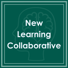Medical Respite Outcome Measures Learning Collaborative