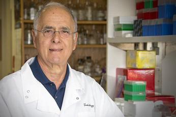 Dr. Stephen Safe