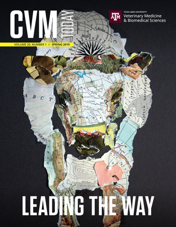 CVM Today cover