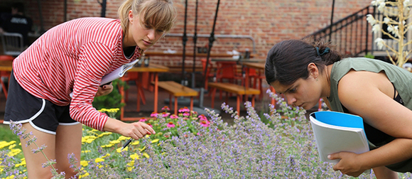 Two biology students examine flowers outside Tonic at Quigley's