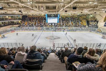 Link to Michigan Tech Athletics Hockey Update