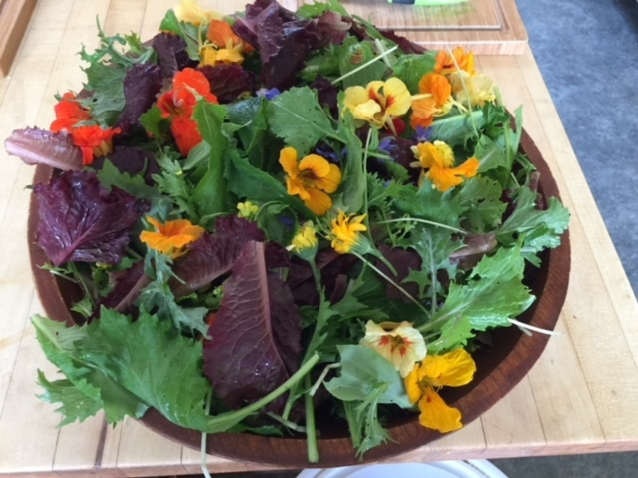 Photo of colorful garden salad