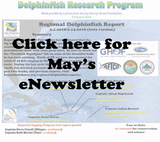 DRP May Newsletter