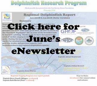 DRP June Newsletter