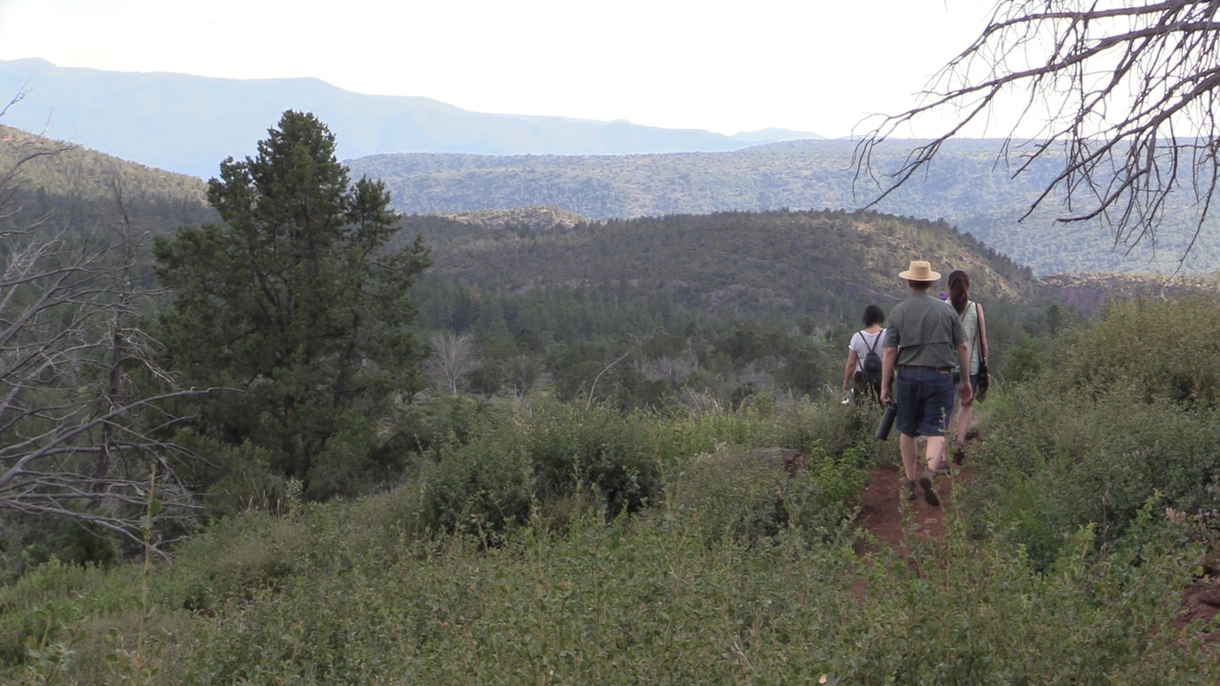 Achieving Forest Health in Arizona