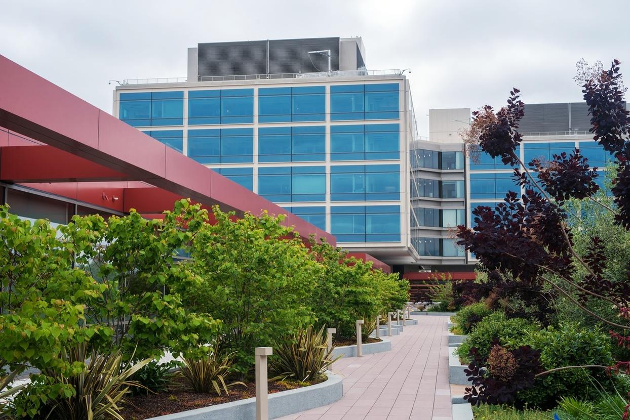 New Stanford Hospital Gardens