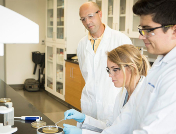 LMU Biochemist Awarded NIH Grant to Study Protein's Role in Diabetes