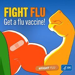 Flu Season Safety