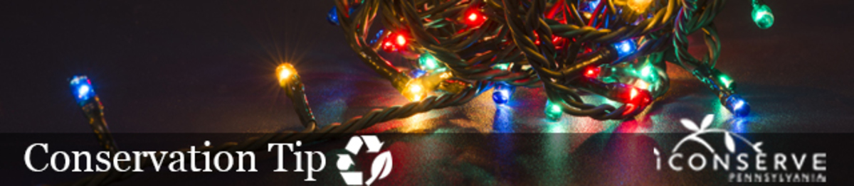 A string of illuminated multi colored christmas lights lays on the floor in a tangled ball
