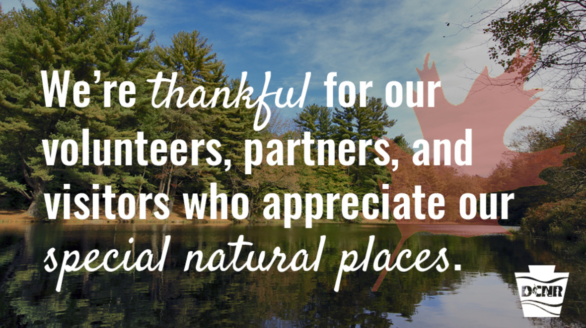 A pond reflects pine trees along its banks and blue skies and white clouds above. Text on Image: We're thankful for our volunteers, partners, and visitors who appreciate our special natural places.