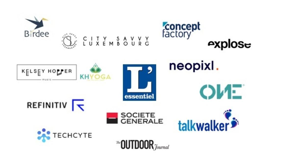 Company logos for the LDI program