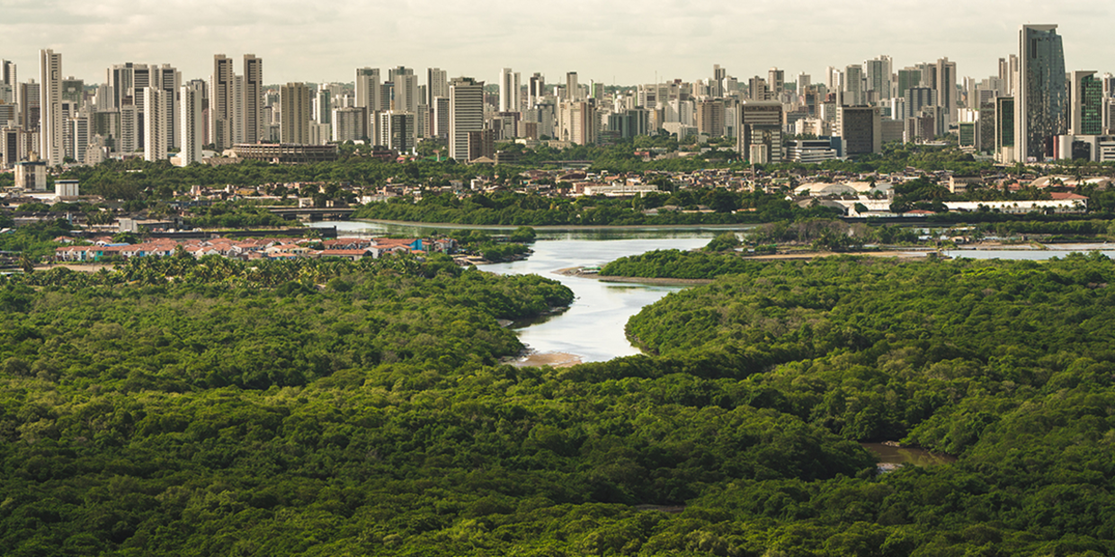 Swath Of Natural Habitat Larger Than The UK Will Be Urbanized By 2030, Global Study Predicts
