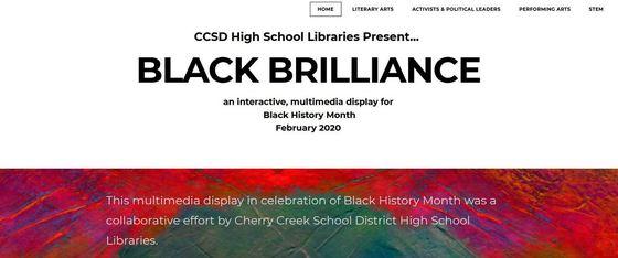 Black Brilliance multimedia display