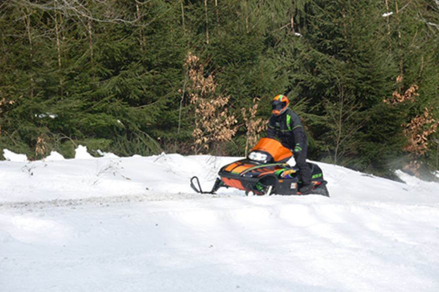 A snowmobiler rides across the snow in front of some trees.