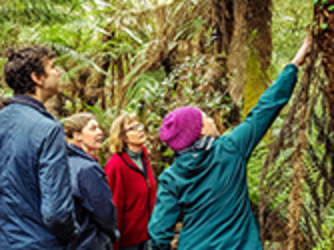 Citizen Scientists connecting with nature