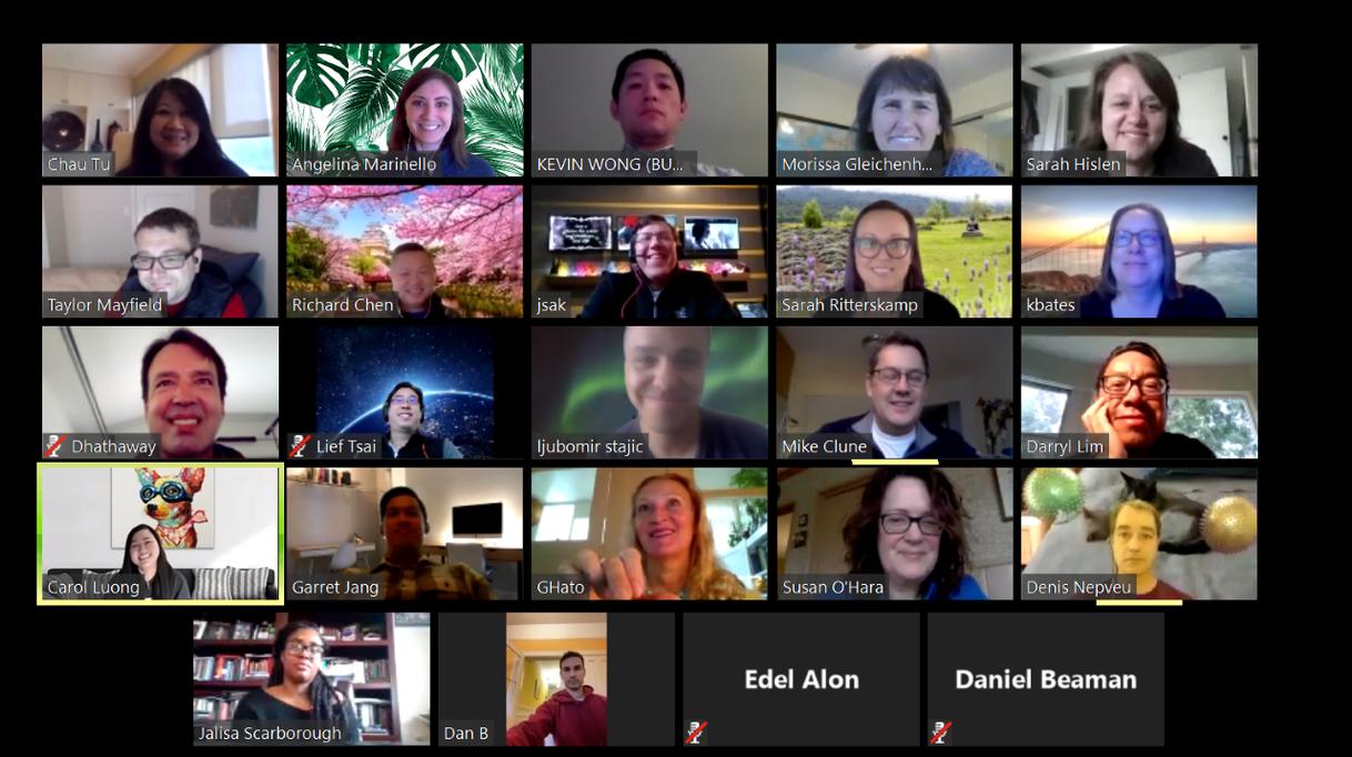 Remote meeting screenshot