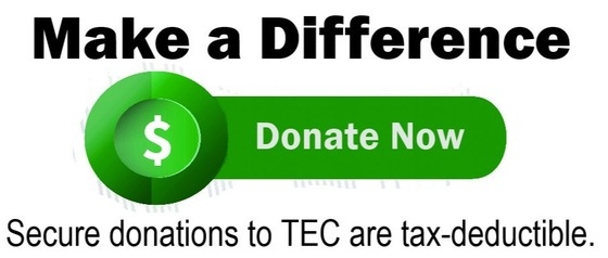 Donate to TEC Online