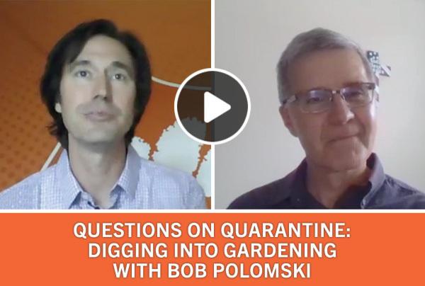 Questions on Quarantine: Digging into gardening with Bob Polomski