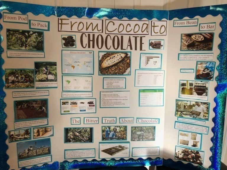 Picture of social studies fair display on history of chocolate