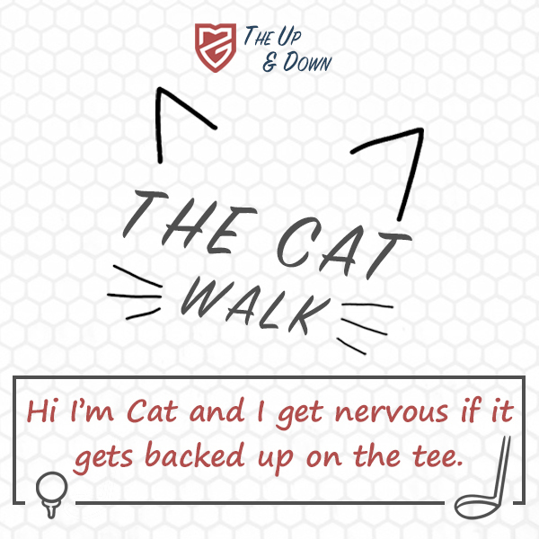 The Cat Walk Blog
