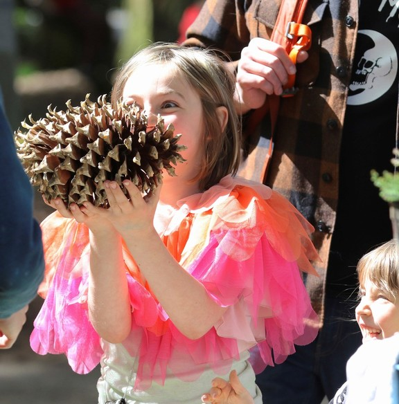 A young girl holds a large pine cone.