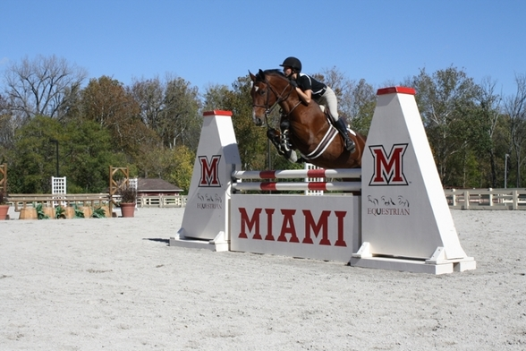 horse jumping over Miami-branded obstacle