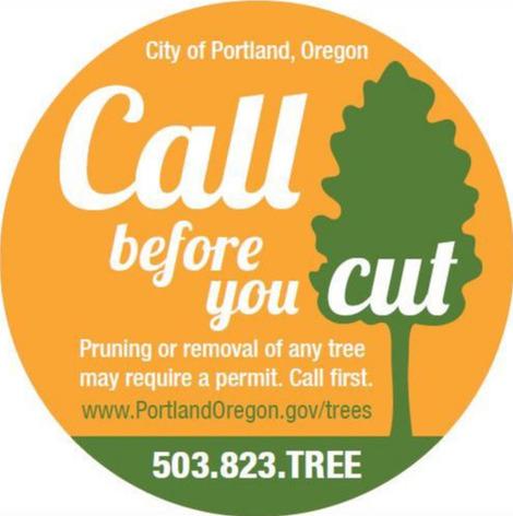 Call before you cut