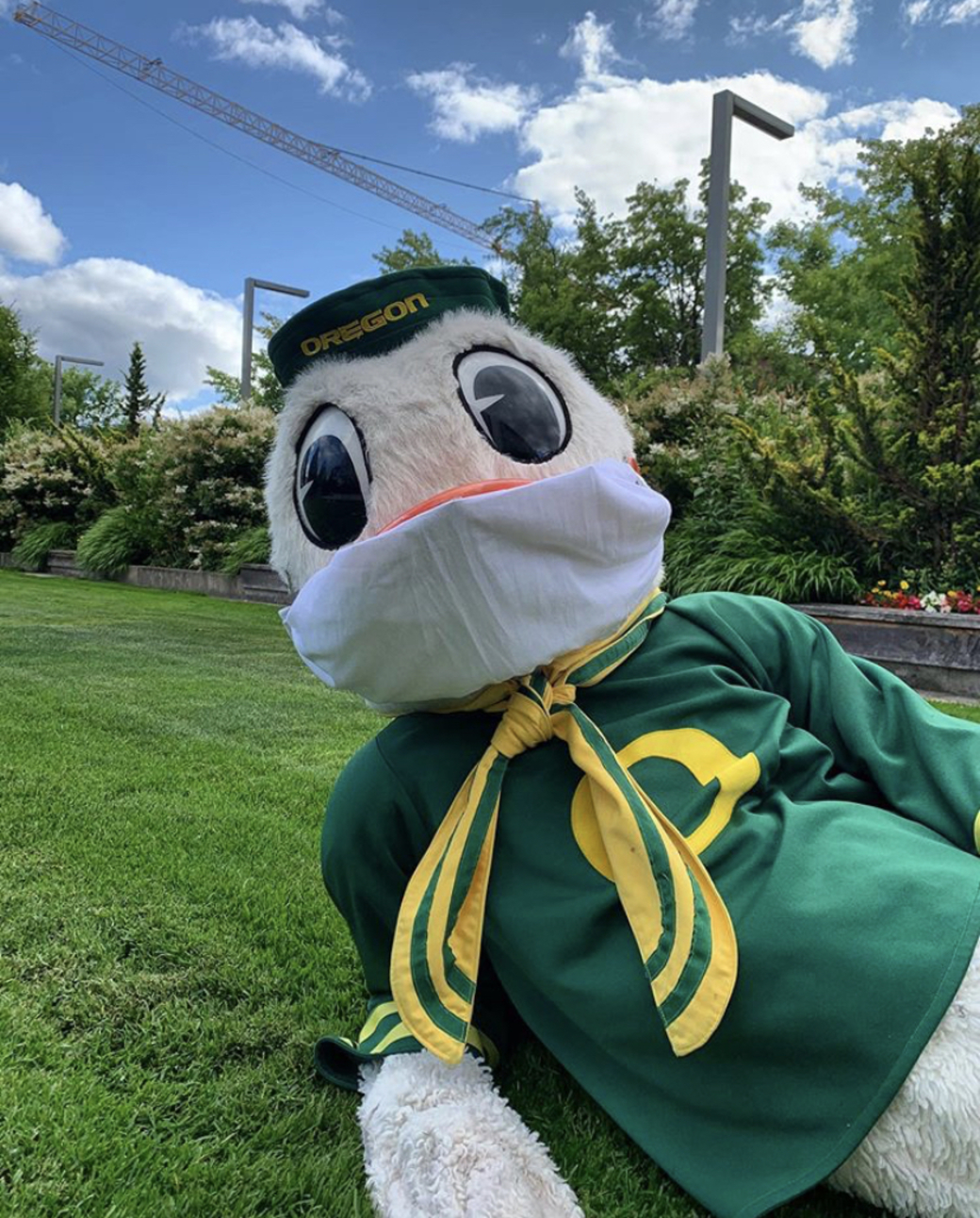 The Duck wears a face covering while relaxing outside.