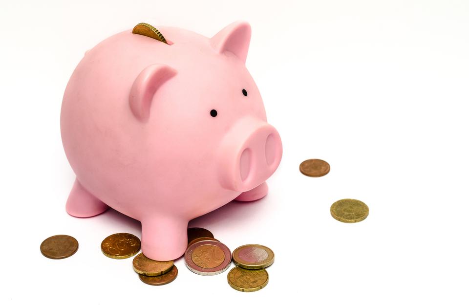 Piggy Bank FASO Image