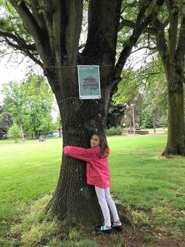 A young girl wraps her arms around a tree.