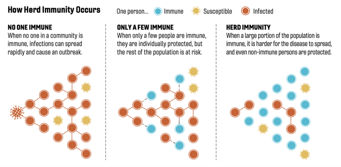 Figure 1: A simple illustration of how to establish herd immunity