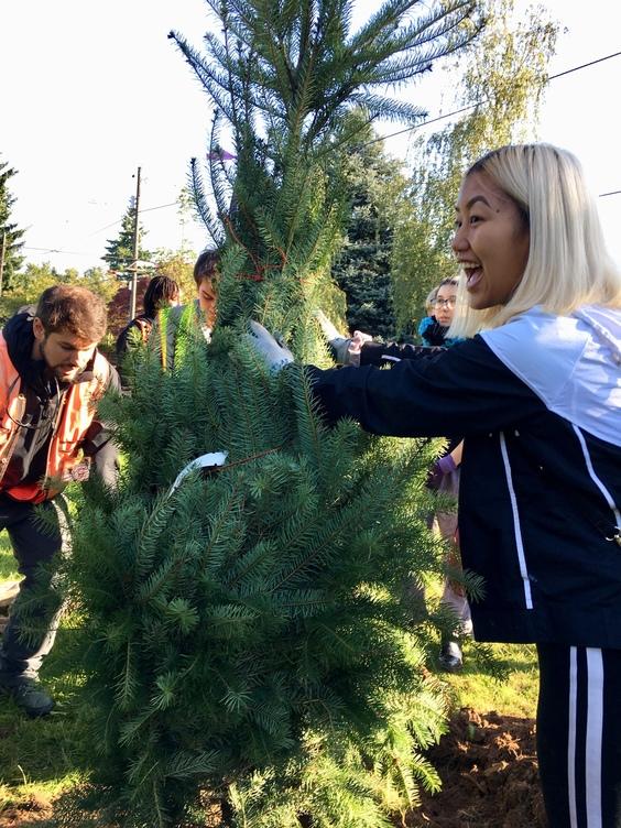 Youth help plant a native Douglas-fir tree.