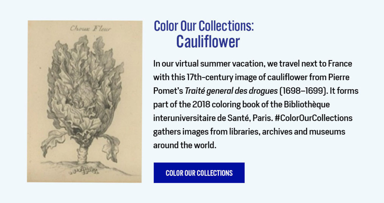 Color Our Collections: Cauliflower - http://library.nyam.org/colorourcollections/wp-content/uploads/sites/5/2018/01/Biusante_ColorOurCollections_2018.pdf