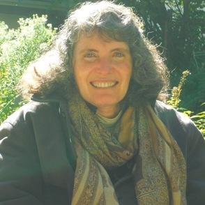 Dr. Lisa Iezzoni