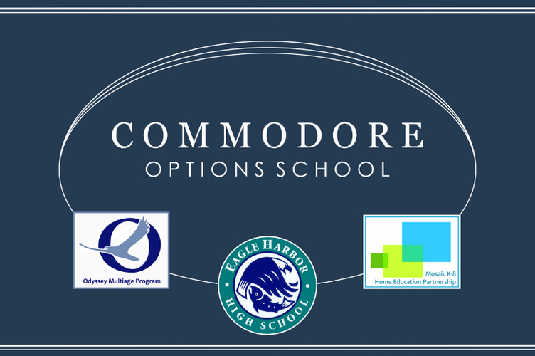 COMMODORE CONNECTIONS