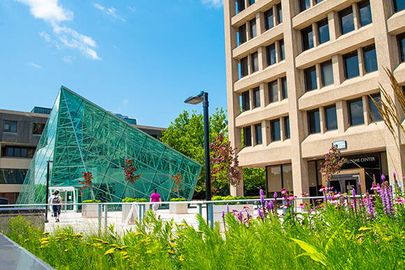 SUNY New Paltz Foundation appoints new members, changes to governance 2020