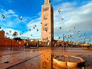 Meridian Global Insights Mission: Kingdom Of Morocco